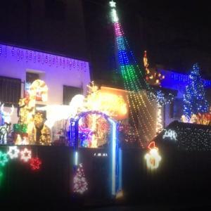 千葉市若葉区みつわ台の個人宅でも、目を楽しませてもらってます。
