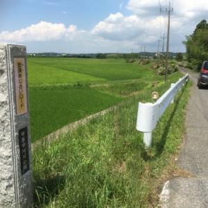 あじさいは、遠くの観光地に行かなくとも、すぐそこに、ある。市原市 安須