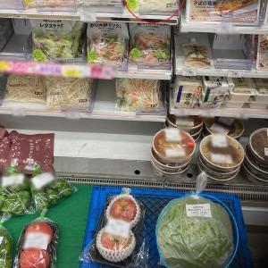 カット野菜(キャベツ)と丸ごとキャベツ