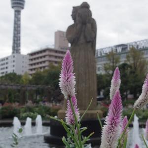 横浜【山下公園】