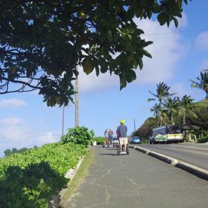 ハワイ旅行㉗ 天国の海【ラニカイ・ビーチ】で極楽気分。
