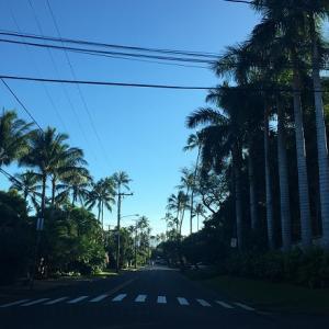 ハワイ旅行㉛ カハラ・ホテル【プルメリア・ビーチ・ハウス】で優雅な朝食。