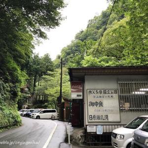 東京都民による東京の旅⑥【日原鍾乳洞】数十万年の神秘に出会う。