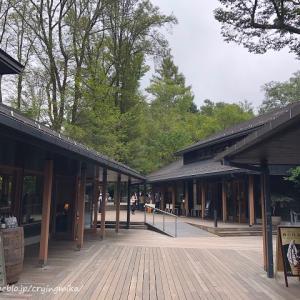 (GOTOトラベル★軽井沢)静かな静かな【ハルニレテラス】でマイナスイオンをたっぷり浴びる。