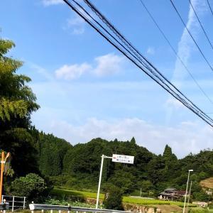 雨沢20分切りトレーニング 【雨沢峠で現状確認】