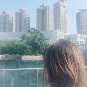 上海2390日目 運動&食事記録11/10