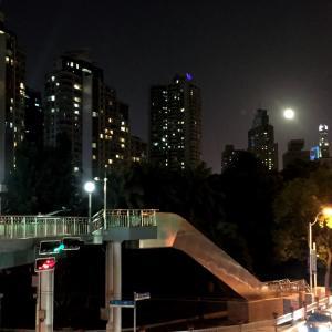 上海2394日目 日本語だけで話せる日まで