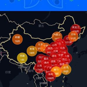 上海2494日目 中国のCOVID-19感染症例数2/24am8:49