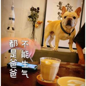 莫干山のペットokなカフェ〜心脏杂音〜