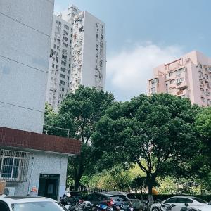 中秋節初日は上海で賃貸物件内見へ