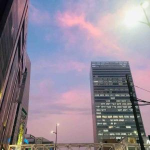 新宿の夕方はきれいです♪♪