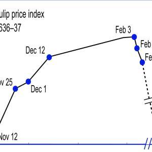 バブル:『ウォール街のランダムウォーカー』12版再読 第二章、第三章