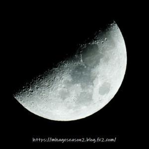 11月の上弦の月
