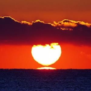 白いだるま朝陽