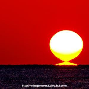 べた凪の太平洋、土佐湾から「だるま朝陽」が昇る