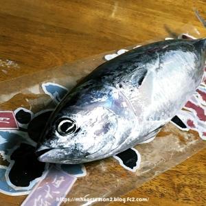 絶品高級魚といて名高い新鮮な「スマ」を焼いて食べたお話