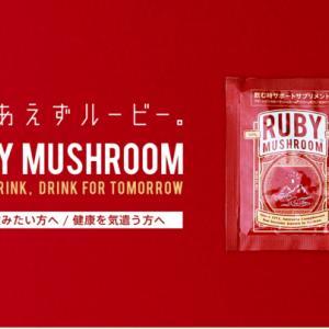#61 【Ruby on Rails】勉強会に参加してみて(【初心者向け】RailsでWebアプリを作ろう!)