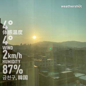 2019.11ソウル2-1▶︎想像通りのビヨット