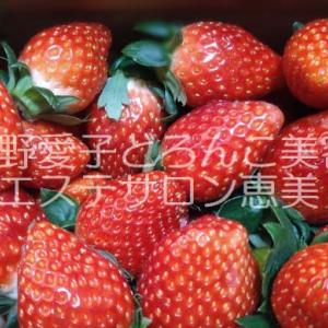 食べる美容成分 栃木県鹿沼市フェイシャルエステサロン エステスクール栃木恵美教室