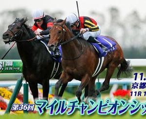たまに大きく当たる三連単!『2019マイルチャンピオンシップ』編!