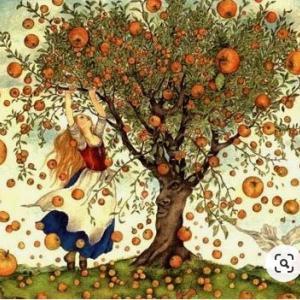 りんごの回想…①