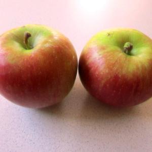 リンゴで3品やってみた