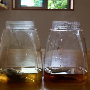 おうち麦茶、短時間で作るには。