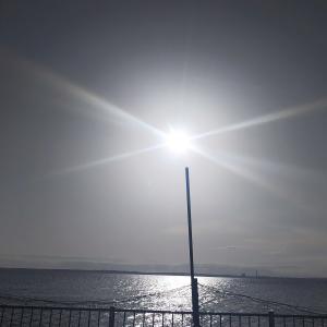 海に夕散歩(´▽`*)