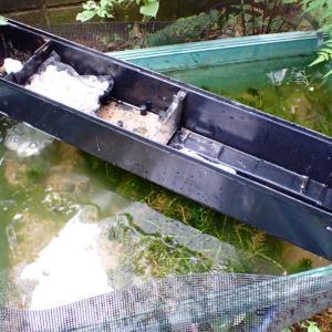 珪藻培養装置