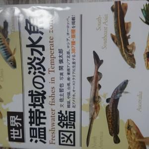 温帯魚のエロ本