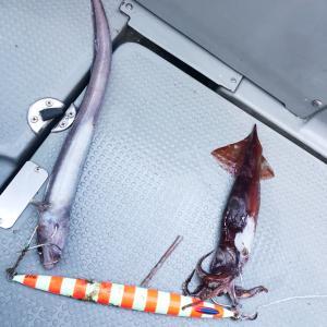 26日深海ジギング ど変態集まる。