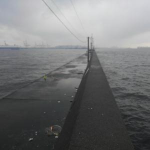 黒鯛ヘチ【7月16日】横浜沖堤(D突堤)