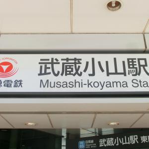 東京周辺には「ムサコ」が3つある~武蔵小山散策(2):朝日地蔵尊/京極稲荷神社