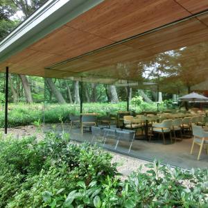 「東京都庭園美術館のフレンチレストラン」と「プチ白金散策」:レストラン デュ パルク