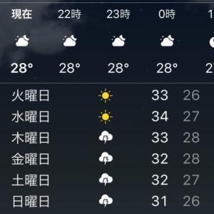 上海、この夏猛暑のピークを越える