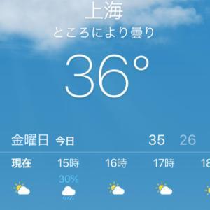 上海は猛暑ぶり返し