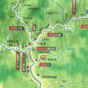 中土佐町の隣り町須崎市でホタル出たみたいよー!