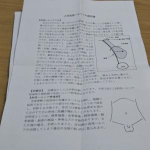 陰嚢水腫(K120)