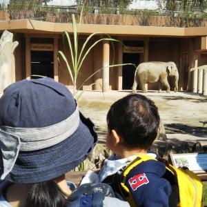 東山動物園(K158)