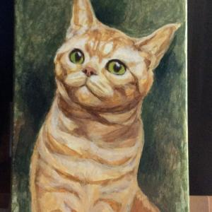 ジンジャー猫ちゃん描き始めました(その1)