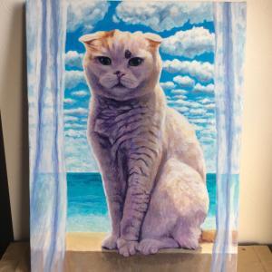 スコティッシュフォールド人気猫ちゃん、描き始めました(その3)