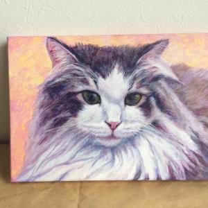 ノルウェージャン美少女猫、描き始めました(その2)