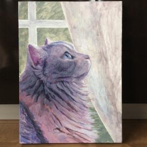ラガマフィンお嬢様猫描き始めました(その1)