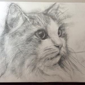 猫絵アクリル画の制作過程/ノルウェージャン女の子描いてます