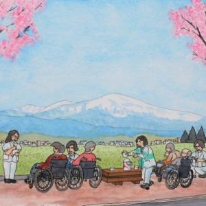 オオヤマザクラと月山  山形市上桜田
