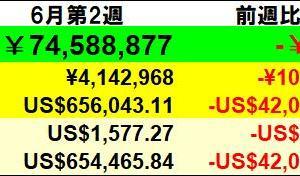 残り934万円】投資状況 2020年6月第2週