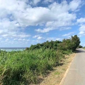 沖縄ひとり旅④ ~読谷をサイクリング~