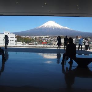 富士山をめぐる静岡ひとり旅① ~18切符で富士宮~