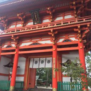 10月の京都ひとり旅② ~大徳寺の龍・今宮神社の玉の輿~