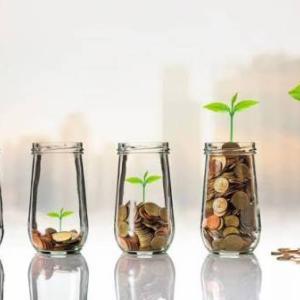 配当はメンテナンスフリーの不労所得|株式の成長にあわせて増える